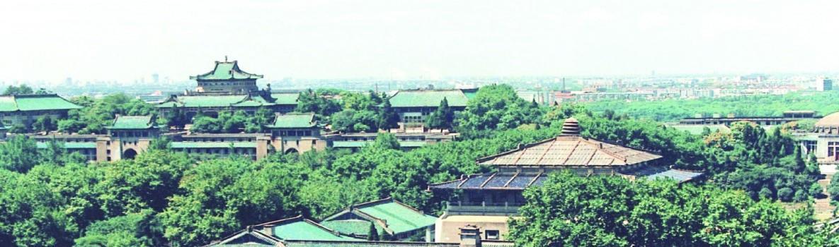 Wuhan University School of Economics and Management