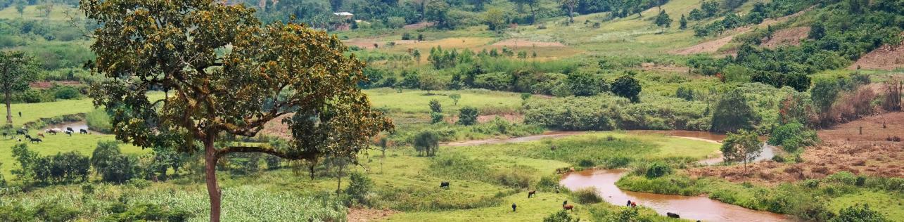 Republik Congo
