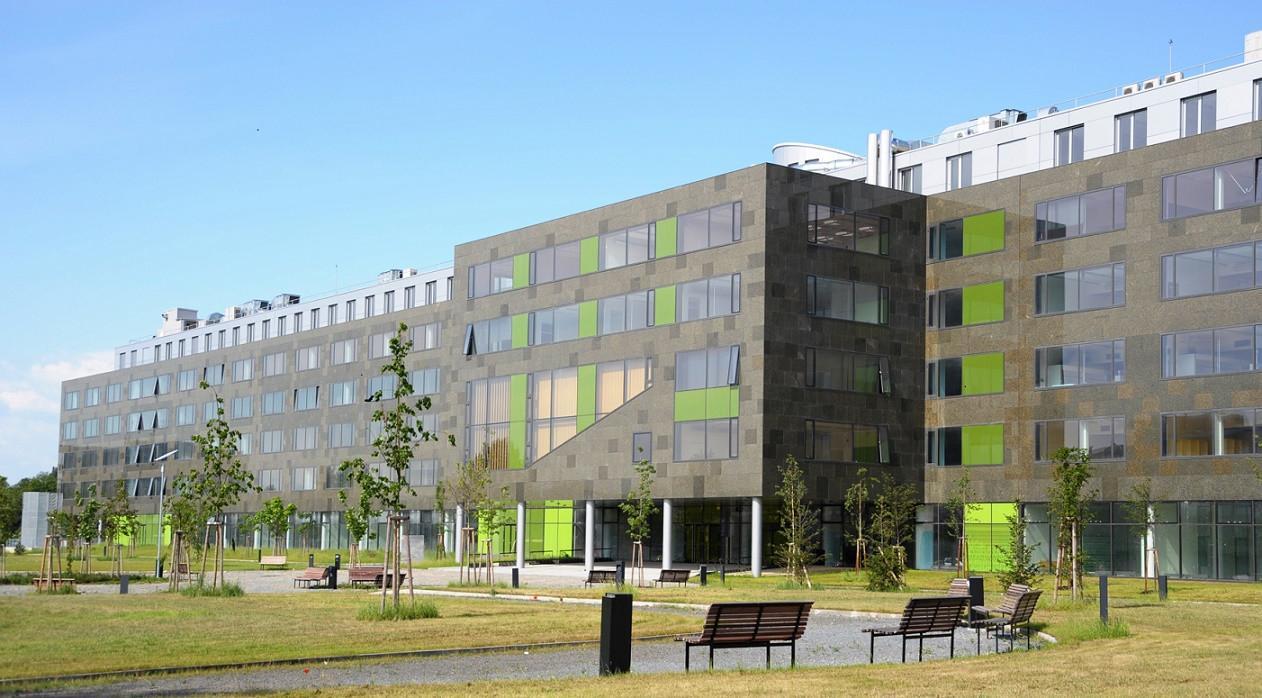 شهادة الدكتوراة في القانون الأوروبي والدولي