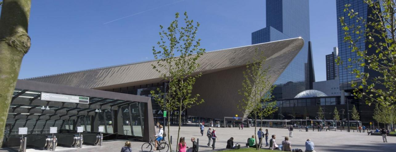 Erasmus School of Economics - Erasmus University Rotterdam