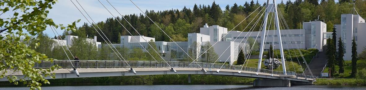 Jyväskylä University Faculty of Mathematics and Science